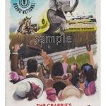 Grand National Poster 2014