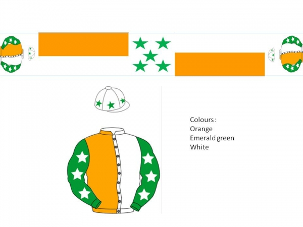 15 x bespoke scarves in your racing colours including express shipment to Ireland