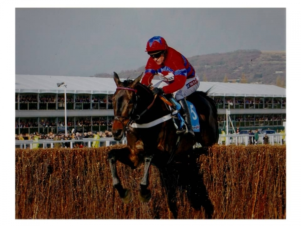 Sprinter Sacre 12 x 10 Mounted Photograph