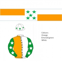 15 x Bespoke Premium Scarves in your racing colours including shipment to Ireland