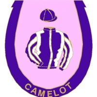 Camelot Badge
