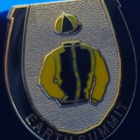 Earth Summit Badge