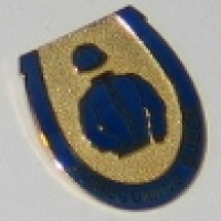Homecoming Queen badge
