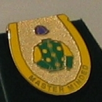 Master Minded Badge