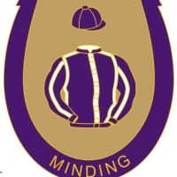 Minding Badge