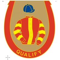 Qualify Badge
