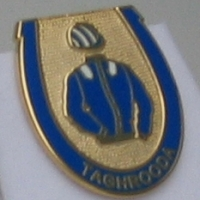 Taghrooda Badge