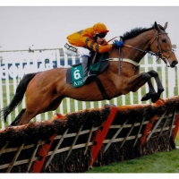 Thistlecrack 12 x 10 Mounted Photograph B