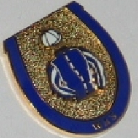 Was lapel badge