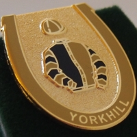 Yorkhill Badge